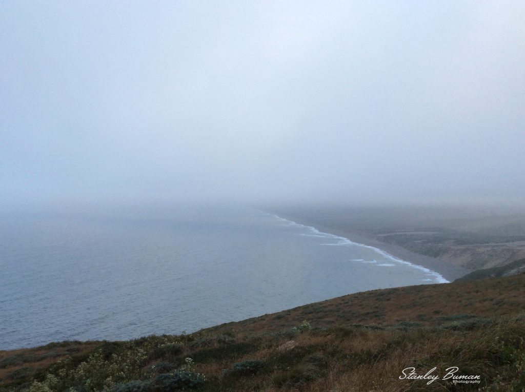 Foggy coast line Point Reyes